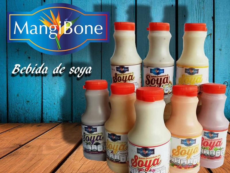 Yogurt (Bebida de soya ) – Mangibone